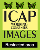 ICAP Working Consensus
